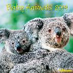 calendario 2014 baby animals 30x30cm-9783832762124