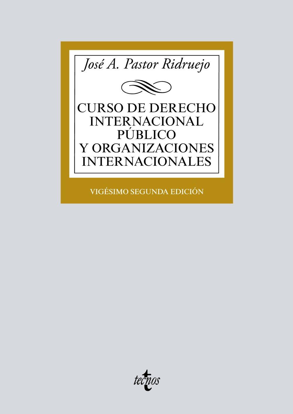 Curso De Derecho Internacional Publico Y  Organizaciones Internacionales (22ª Ed.) por Jose Antonio Pastor Ridruejo
