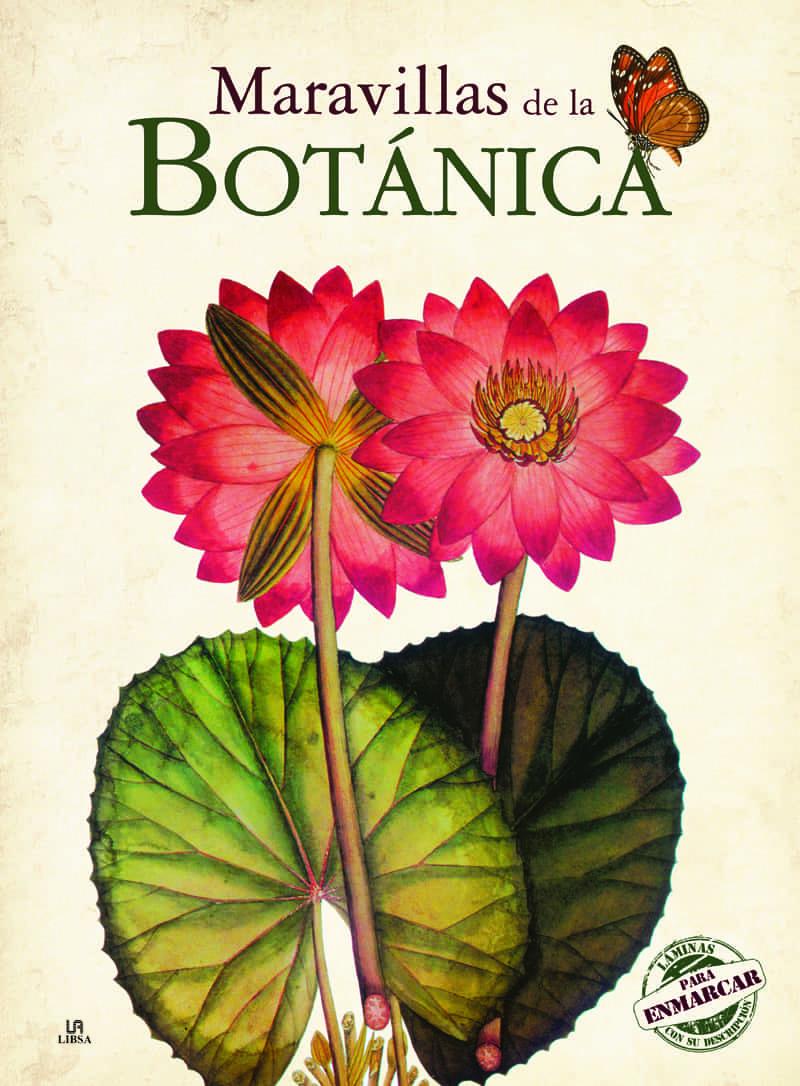 MARAVILLAS DE LA BOTANICA (LAMINAS PARA ENMARCAR) | VV.AA. | Comprar ...