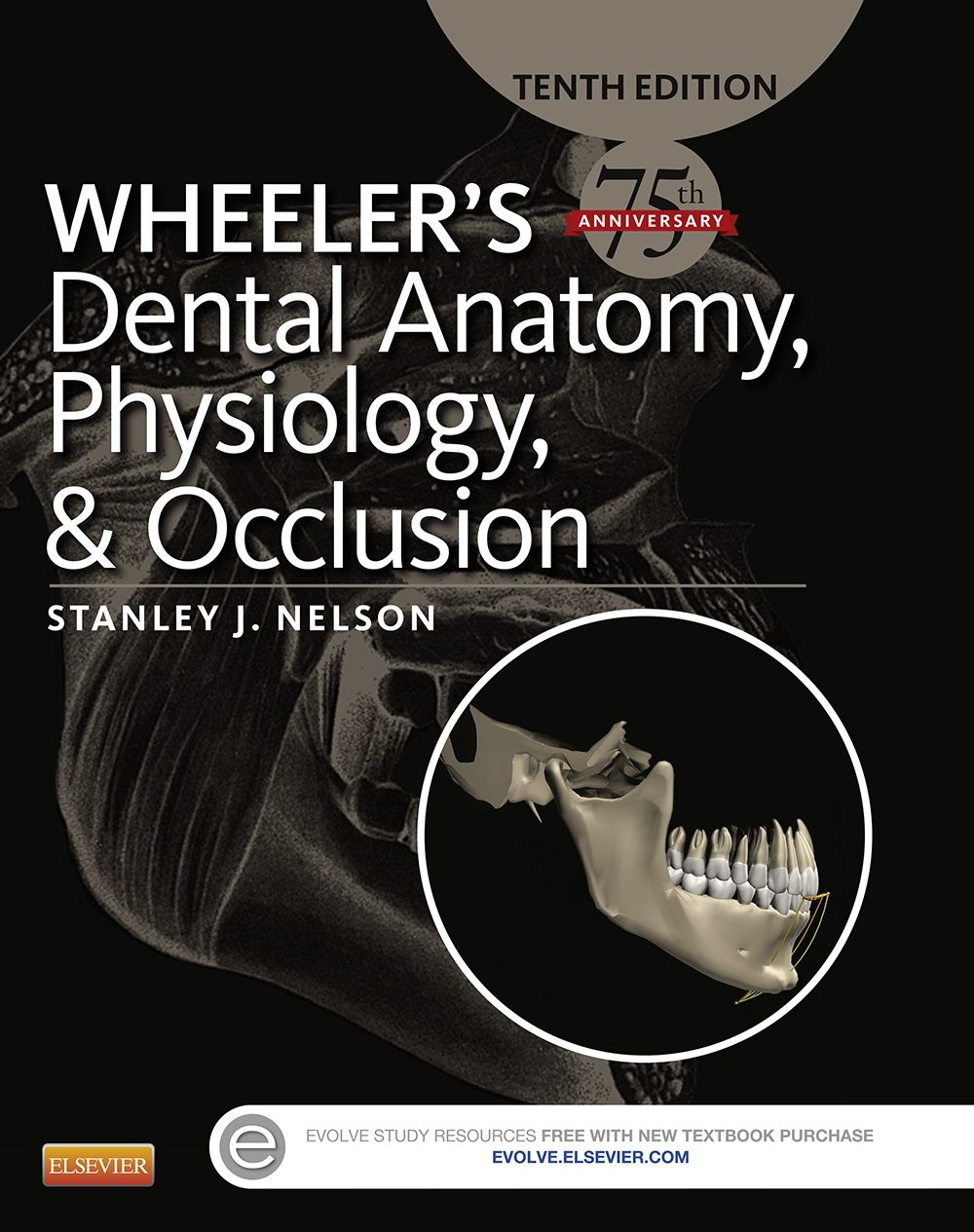 WHEELER\'S DENTAL ANATOMY, PHYSIOLOGY AND OCCLUSION - E-BOOK EBOOK ...