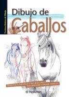 dibujo de caballos david sanmiguel 9788434241015