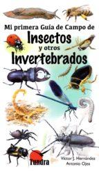 insectos y otros invertebrados: mi primera guia de campo victor j. hernandez antonio ojea 9788416702435