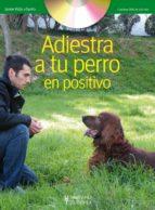 adiestra a tu perro en positivo (incluye dvd)-jaime vidal-9788425519635