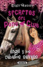 ángel y los caballos salvajes stacy gregg 9788467721935