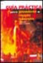 guia practica para la prevencion de riesgos laborales (3ª ed.)-rafael diaz moliner-9788484064435