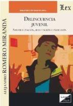 delincuencia juvenil: neutralizacion, refutacion y profusion alejandro romero miranda 9789563920055
