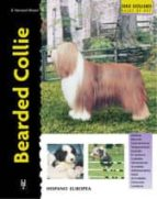 bearded collie bryony harcourt brown 9788425513565