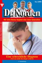 dr. norden 1099 - arztroman (ebook)-patricia vandenberg-9783740922375
