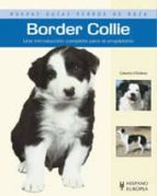 border collie: nuevas guias perros de raza caterina o sullivan 9788425519475