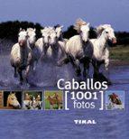 caballos 1001 fotos 9788499280875