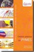 gestion practica de pymes: como mejorar los resultados de la empr esa-javier santibañez-dionisio camara-9788492812295