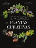 HERBARIO DE PLANTAS CURATIVAS - 9788417273415 - VV.AA.