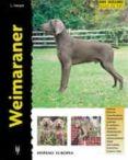 WEIMARANER - 9788425513985 - L. HARPER