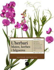 Upgrade6a.es L Herbari: Mates, Herbes I Falgueres Image
