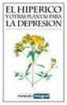 Permacultivo.es El Hiperico Y Otras Plantas Para La Depresion Image