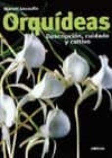 Officinefritz.it Orquideas: Descripcion, Cuidado Y Cultivo Image