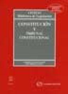 Vinisenzatrucco.it Constitucion Y Tribunal Constitucional (25ª Ed) Image