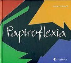 papiroflexia-vicente palacios-9788484125235