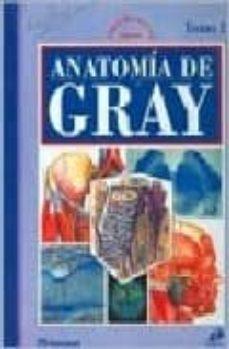 Bressoamisuradi.it Anatomia De Gray Image