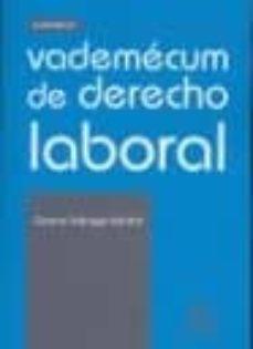 Costosdelaimpunidad.mx Vademecum De Derecho Laboral Image