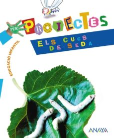 Iguanabus.es Projecte 5 Cucs De Seda Image