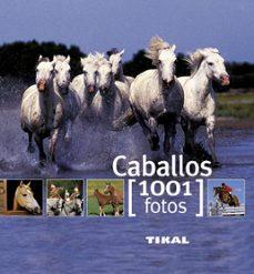 caballos 1001 fotos-9788499280875