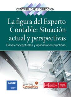 la figura del experto contable: situación actual y perspectivas-9788416583195