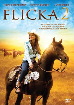 flicka 2 (dvd)-8420266952462