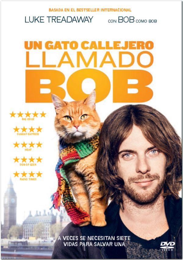 un gato callejero llamado bob - dvd --8414533103091