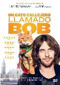 UN GATO CALLEJERO LLAMADO BOB - DVD -